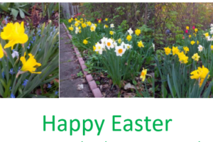 Happy Easter 2020 From HIA